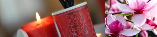 RAUMDUFT - KOLLEKTION - MAGNOLIA ROSA - Ein moderner Duft mit raffiniert fruchtigen Blütenblättern
