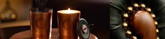 RAUMDUFT - KOLLEKTION - ÈBÉNE ET CUIR - Ein holziges Amber - Leder Parfum