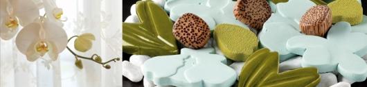 RAUMDUFT - KOLLEKTION - ORCHIDEÉ BLANCHE - Ein klares, zartes, frisch-grünes Blumenparfum