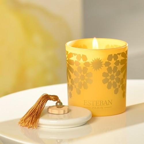 DUFTKERZE - AMBRE - Esteban Paris Parfums - 170g