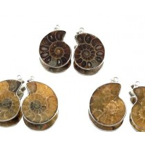 Steinschmuck - Anhänger Ammoniten / Fossilien
