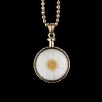 BLUMENKIND - Schmuck - Anhänger Gold - Chrysantheme Weiß