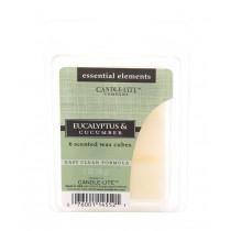 Candle Lite - RAUMDUFT - AROMAWACHS - Tart - Eucalyptus & Cucumber
