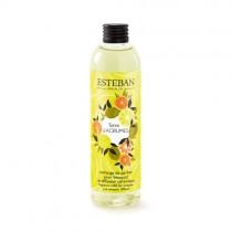 NACHFÜLLDUFT - TERRE D´AGRUMES - Esteban Paris Parfums