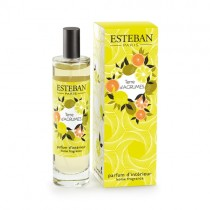 DUTZERSTÄUBER - 100ml - TERRE D´AGRUMES - Esteban Paris Parfums